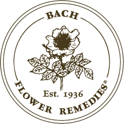 Bach Flower Remedies - The Pamper Room